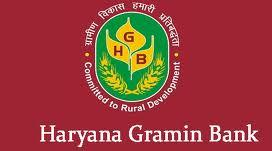Haryana Gramin bank English Question Paper 2016 Clerk Officer