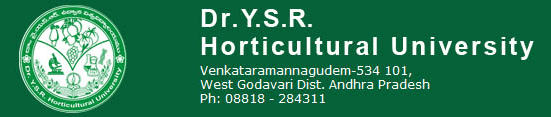 Jobs in Dr. YSR Horticultural University Recruitment 2017 Download Application Form www.drysrhu.edu.in
